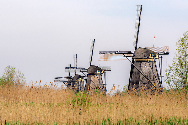 The windmills of Kinderdijk by Wolfgang Stocker